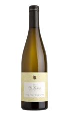 """Sauvignon Blanc """"Pierre Sauvignon"""" Vie di Romans"""