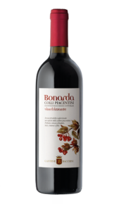 Bonarda DOC Vivace Cantine Bacchini